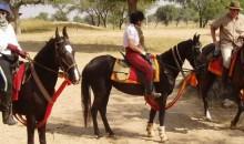 Shekhawati Rides