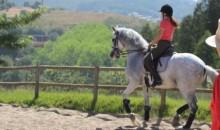 Scuola di equitazione Alcainça